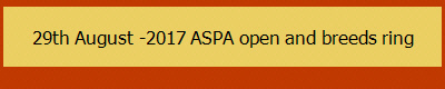 29th August -2017 ASPA open and breeds ring